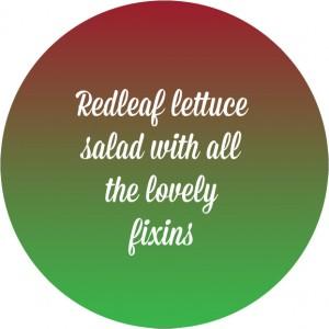 redleaf_salad