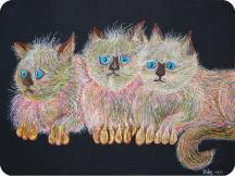 Scaredy-Cats