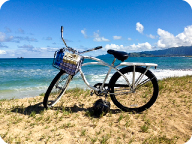 banana_beachcruiser