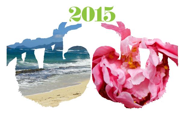 2015_yearofsloth