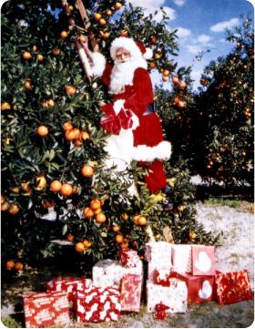 orange_santa