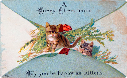christmas_card_kittens