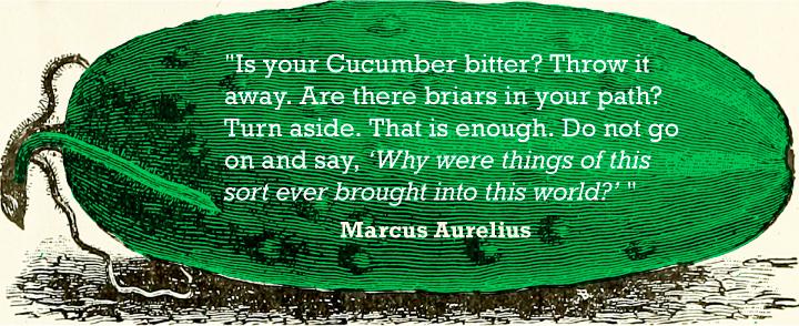 cucumber_quote