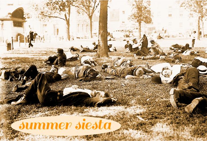 summer_siesta