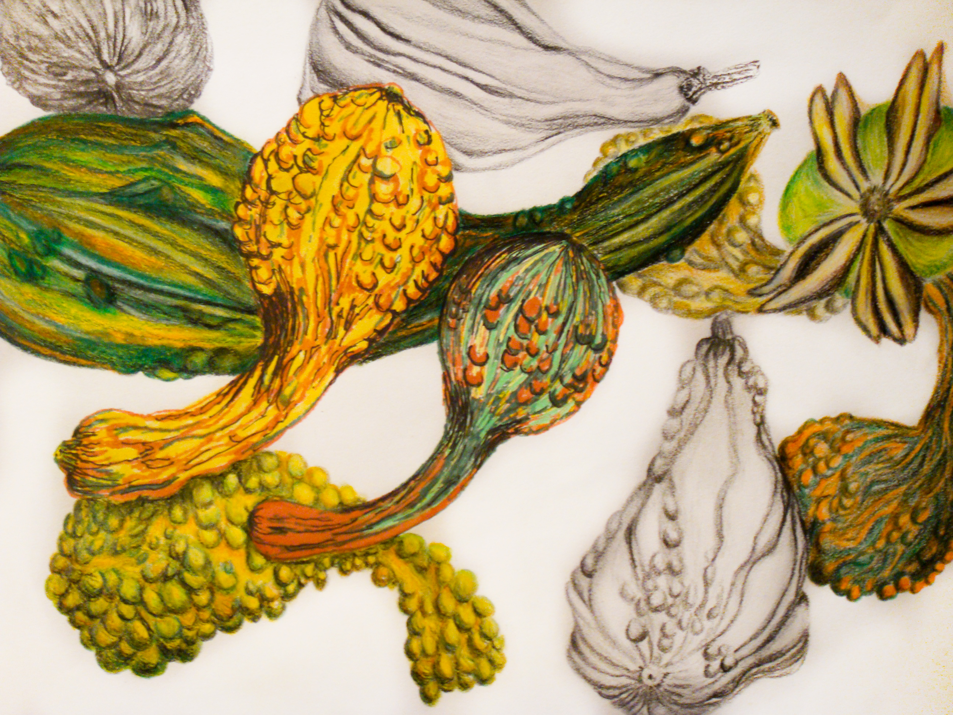 floating_gourds